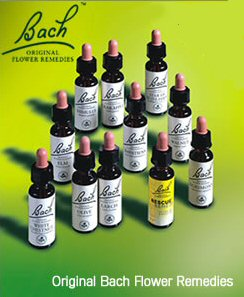 bach-flower-remedies - holistic treatment for anxiety
